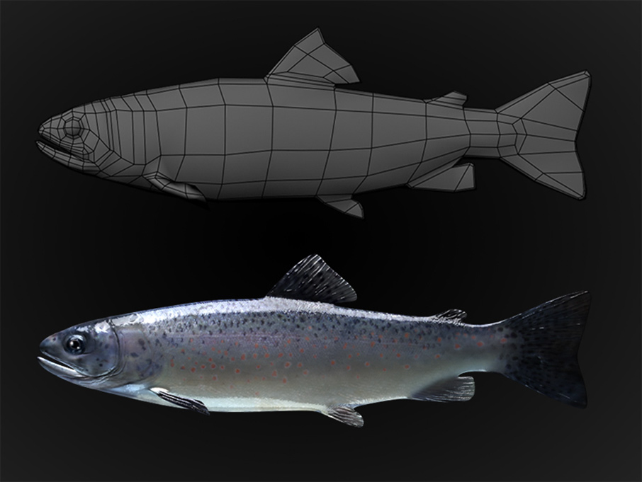 Low Polygon Trout 3D Model