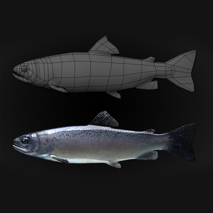 Trout model for animation